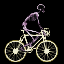 Image Source: http://www.jointaction.org.uk/media/Joint%20Action%20Media/News%20Pictures/X-Ray%20Bike%20Rider%20(colour)%20(smaller).JPG