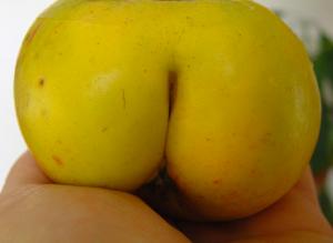 Image Source: http://funnydrive.com/wp-content/uploads/2012/07/apple-crack-funny-fruit.jpg