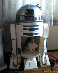 Image Source: http://funnyfilez.funnypart.com/pictures/FunnyPart-com-r2d2_cat_home.jpg