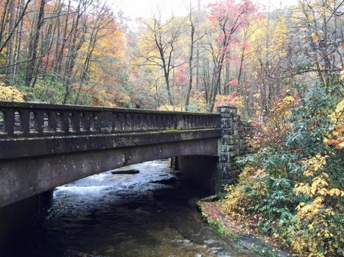 Pisgah Forest - Near Asheville